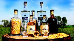 wtd_bottles