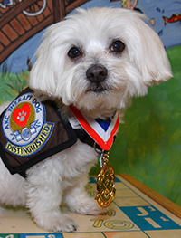 Riley - Therapy Dog - Children's Advocacy Center